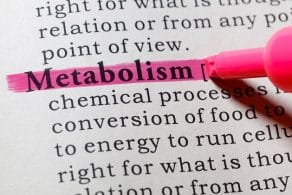 All you Need to Know About Metabolic Testing